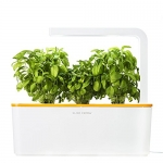 Click & Grow Indoor Smart Herb Garden with 3 Basil Cartridges and Orange lid