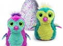 Hatchimals – Hatching Egg – Interactive Creature – Penguala – Pink/Teal Egg by Spin Master
