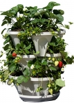 Mr. Stacky Self Watering 3 Tier Stackable Garden Vertical Planter Set